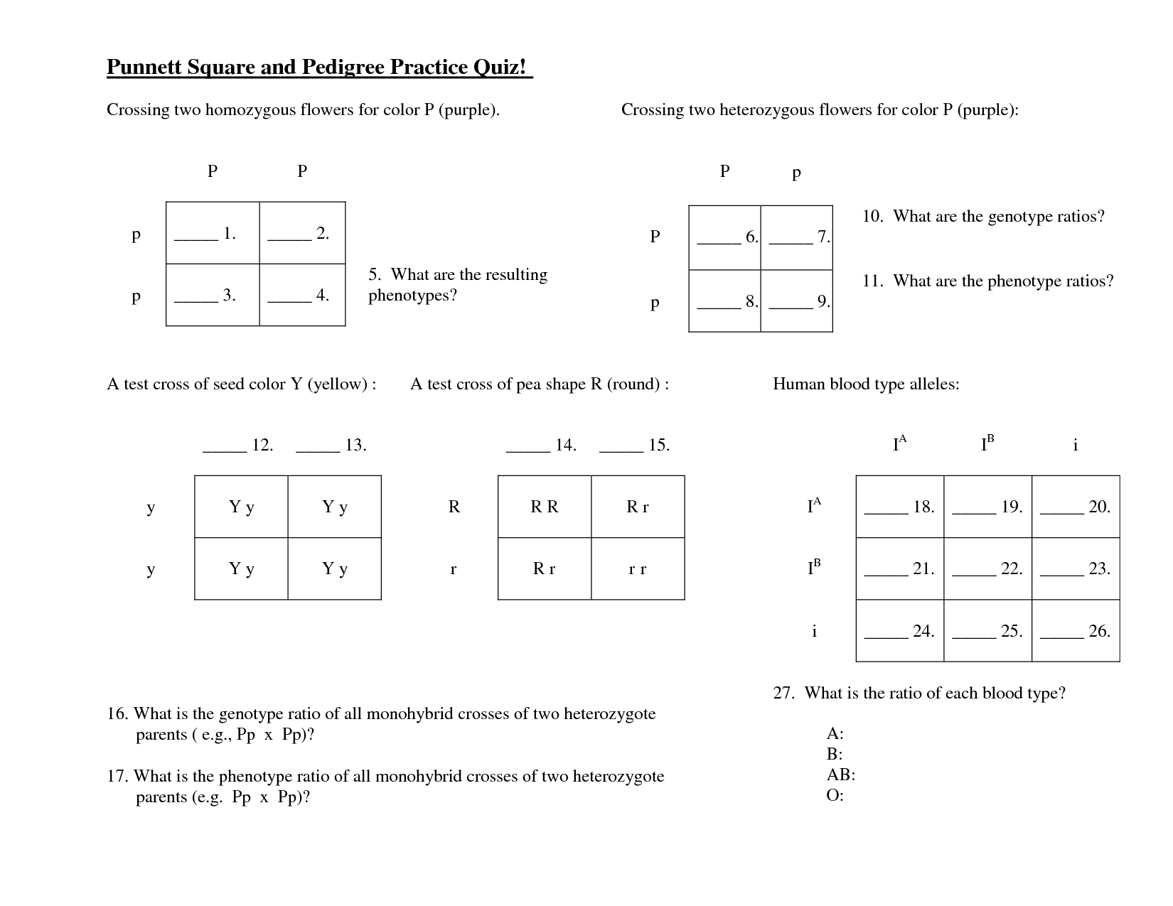 Human Pedigree Genetics Worksheet Key