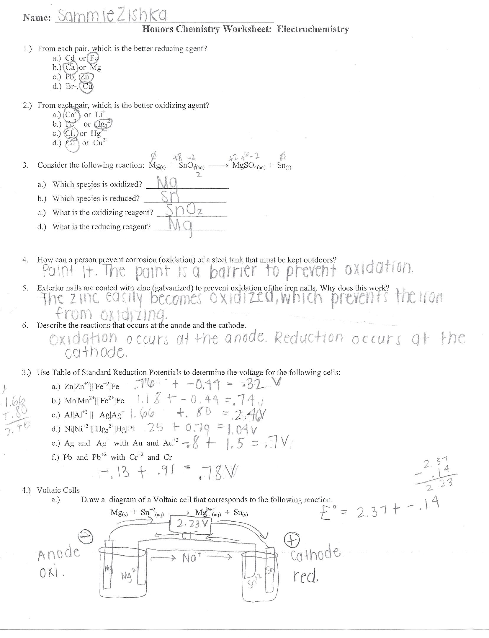 Worksheet Half Life Answers