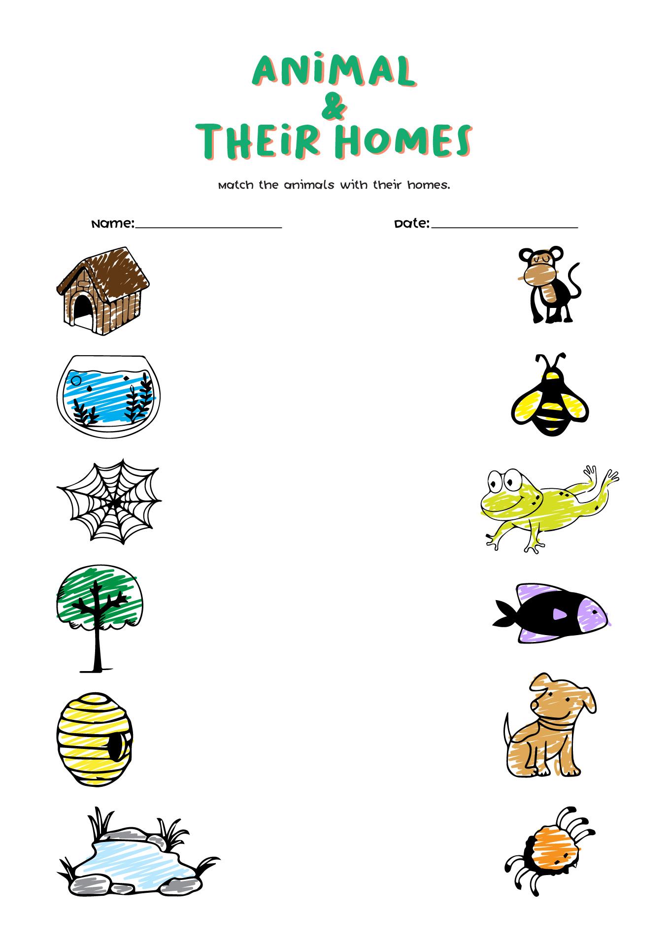 12 Best Images Of Animal Sorting Worksheets Printable