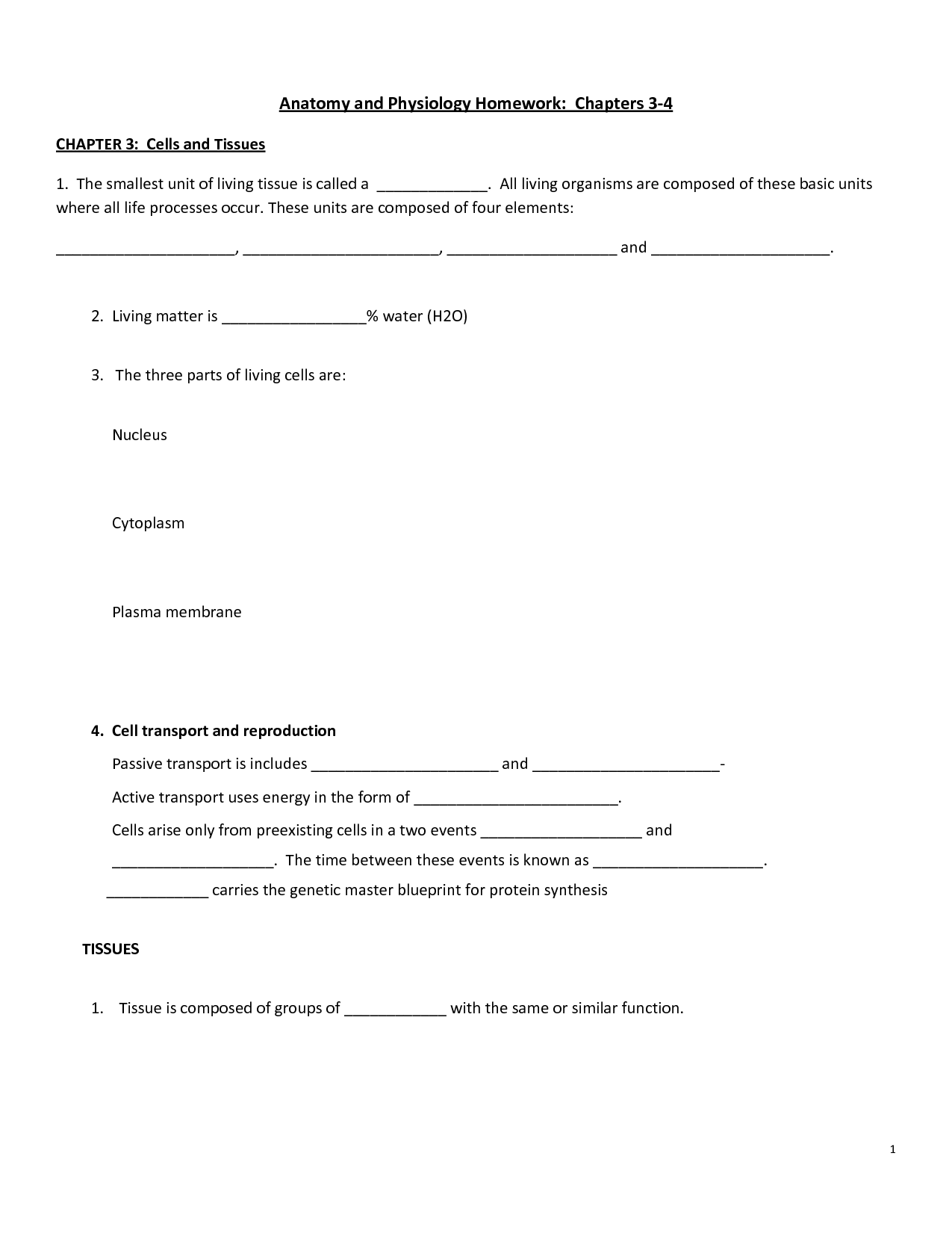 19 Best Images Of Cells Worksheets Grade 7