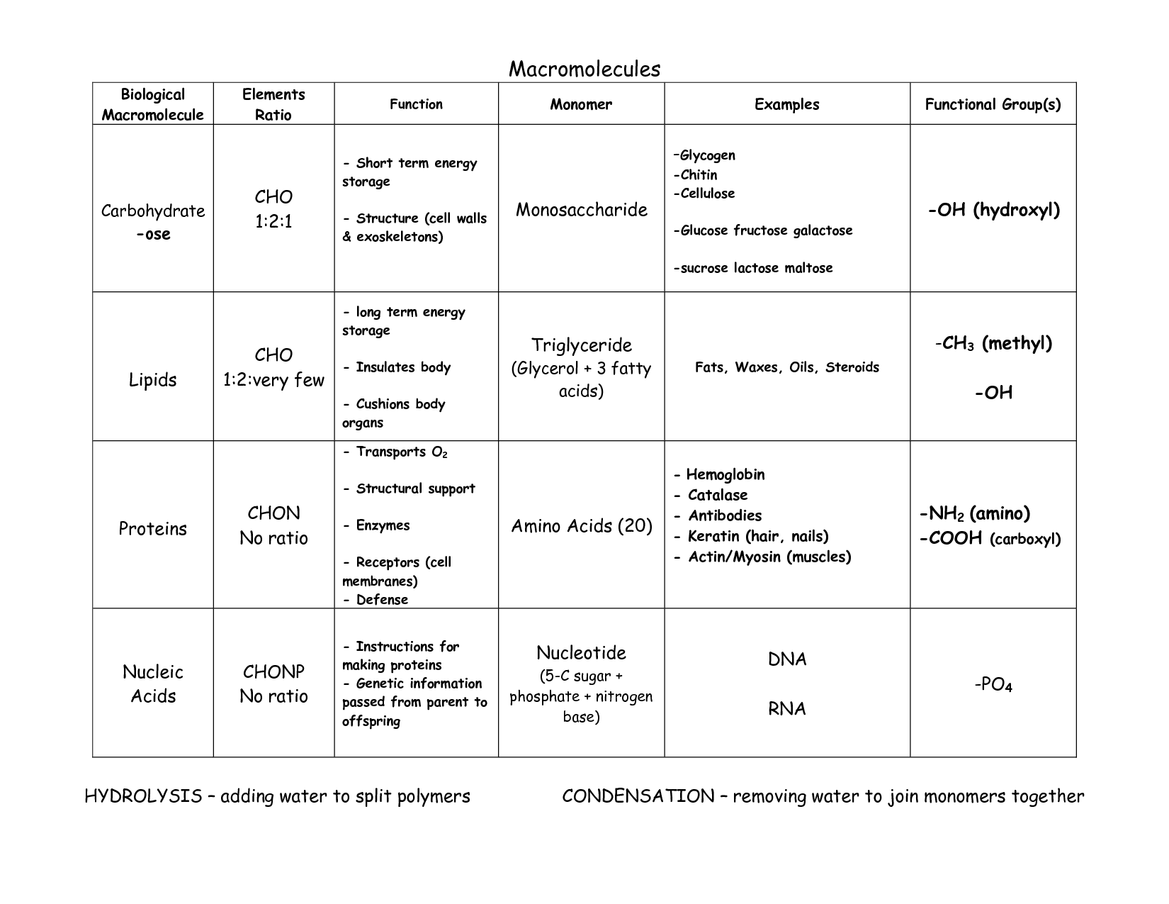 Aerobic Respiration And Photosynthesis Comparison