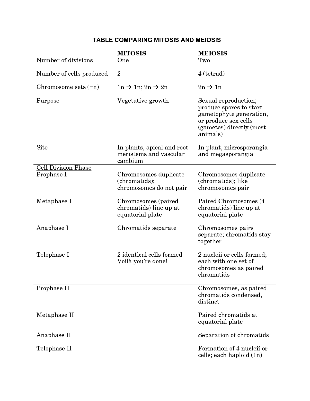 Identifying Processes Meiosis Worksheet Answers