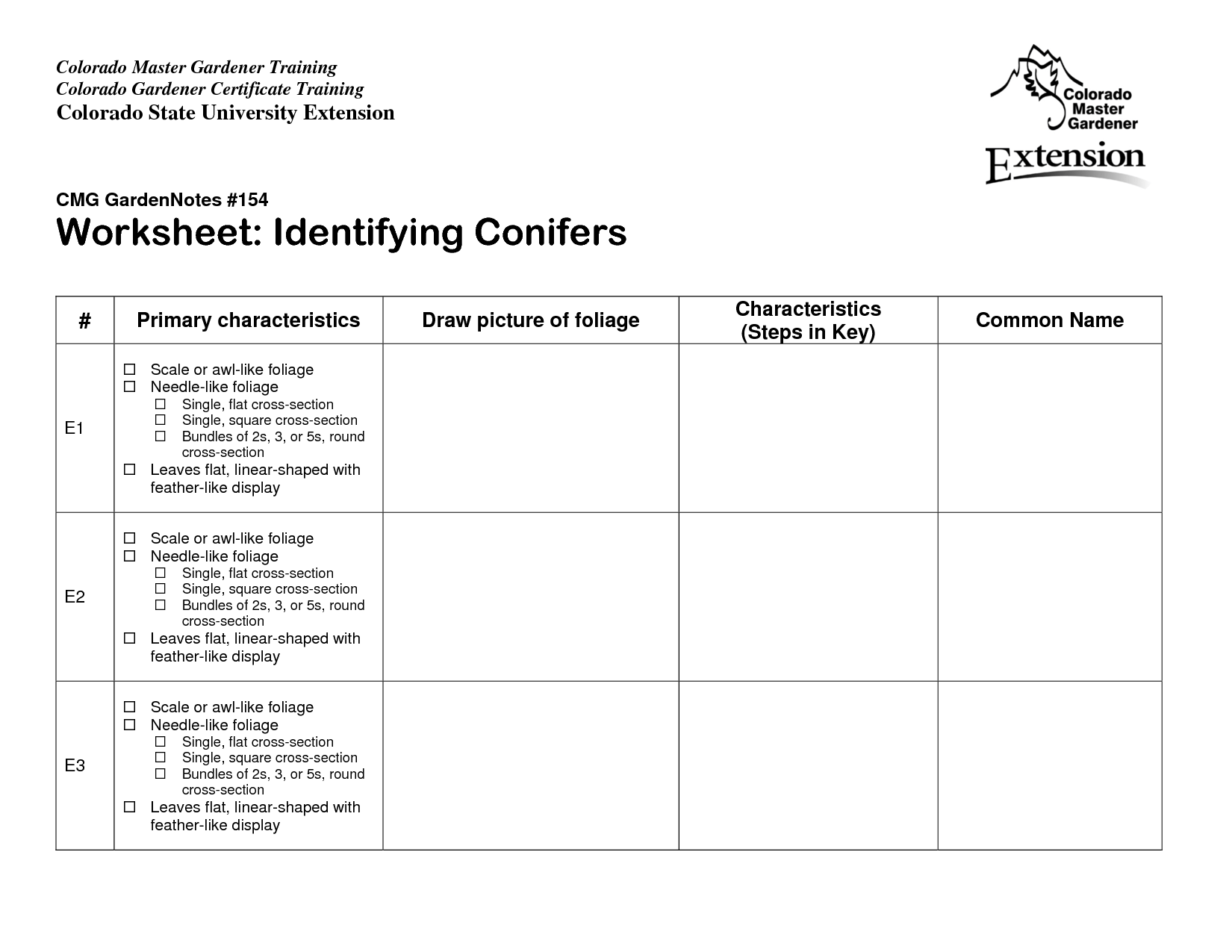 16 Best Images Of Identifying Categories Worksheets