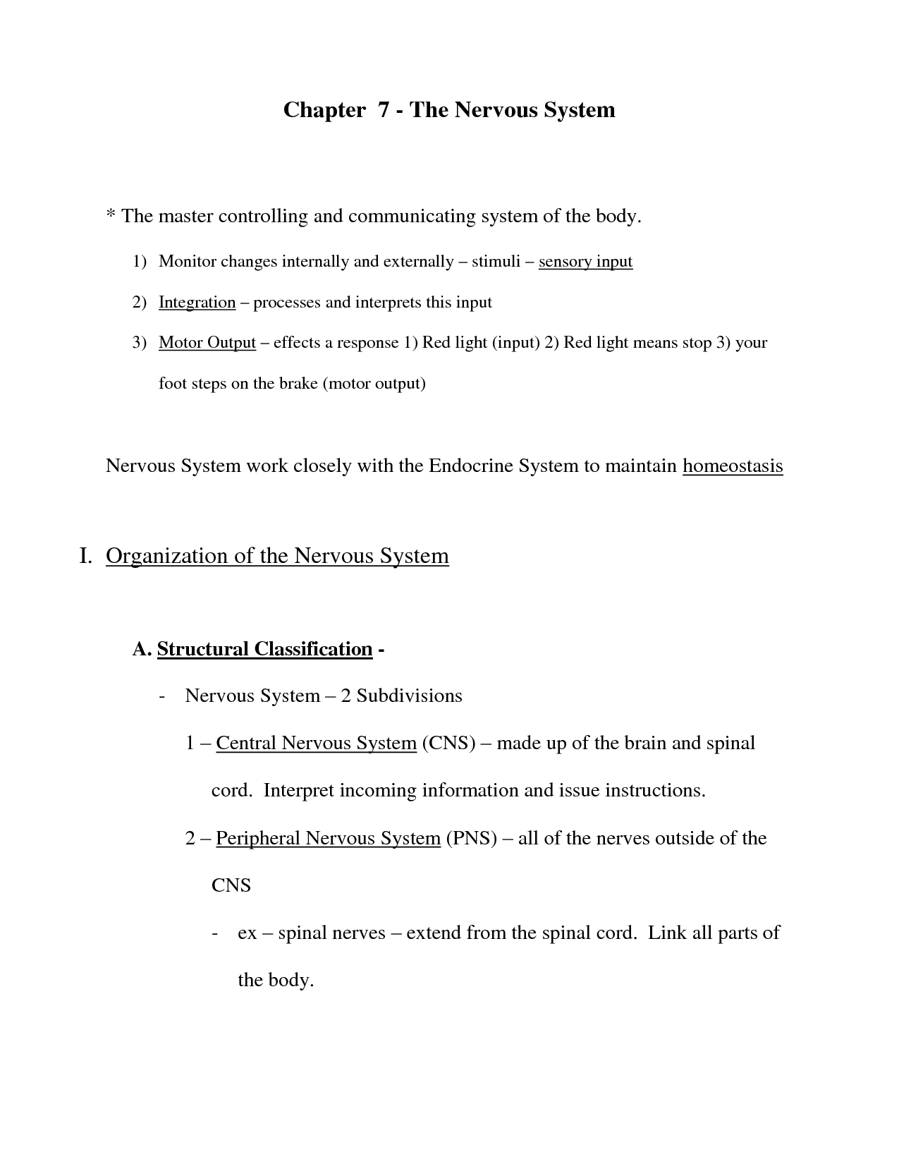 18 Best Images Of Classification Key Worksheet Answer