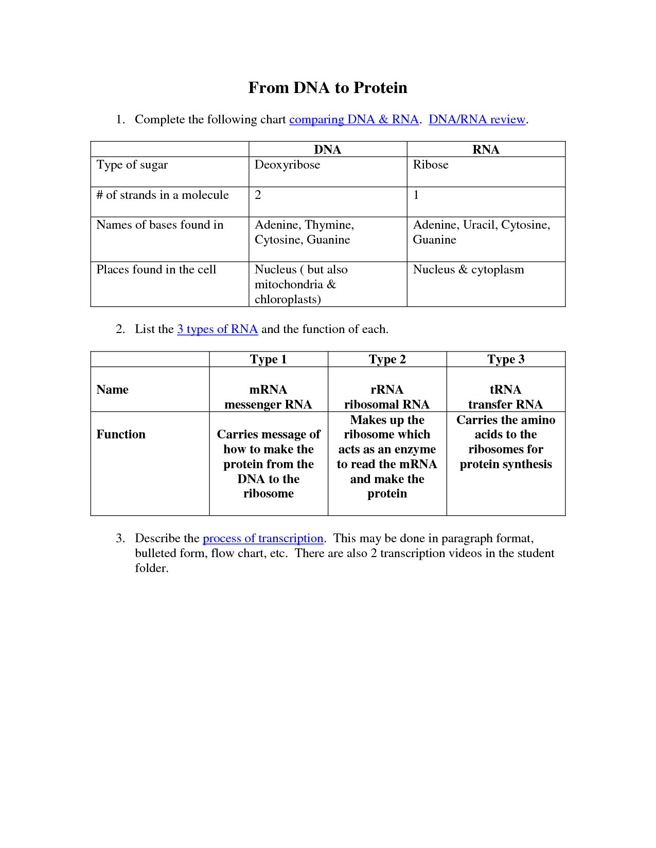 14 Best Images Of Comparing Dna And Rna Worksheet
