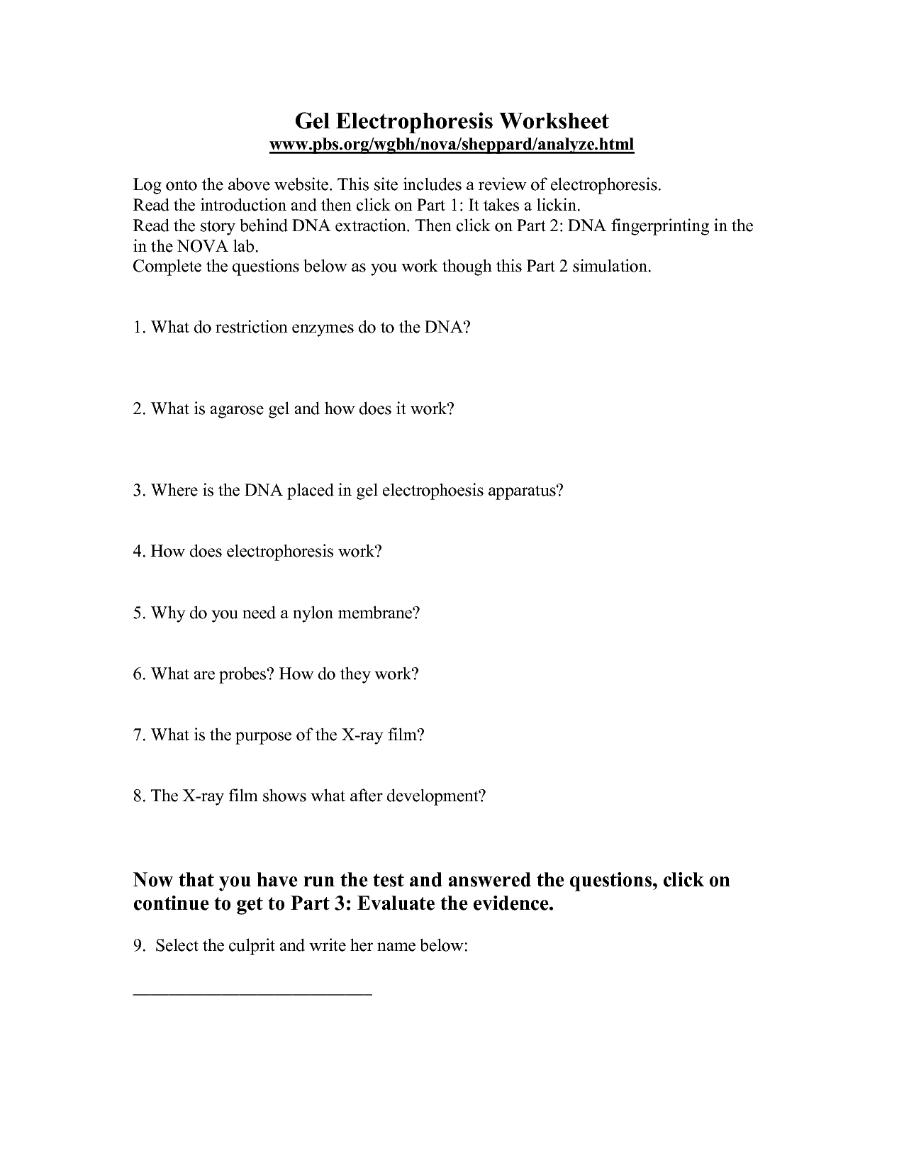 34 Dna Extraction Virtual Lab Worksheet Answers