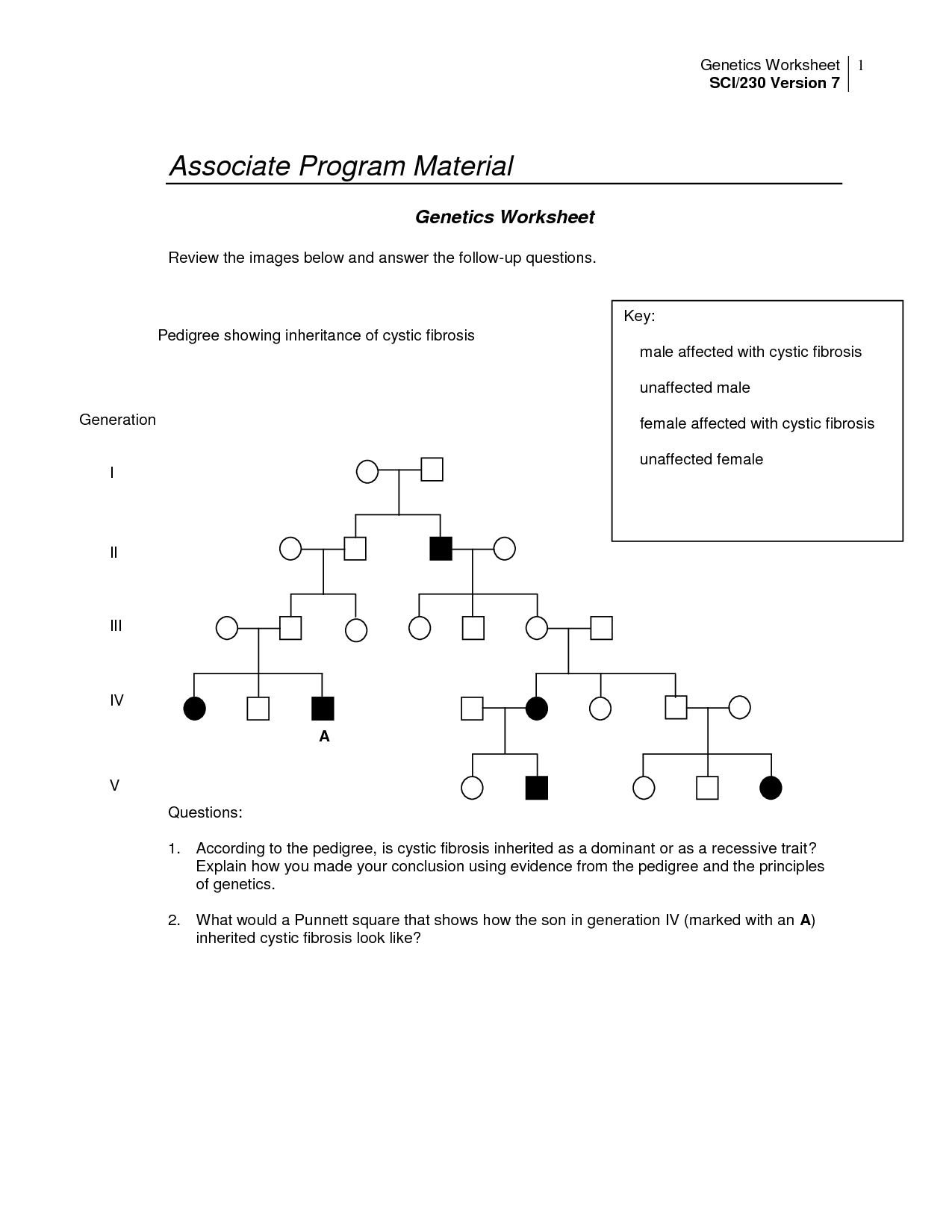 Autosomal Pedigrees Worksheet