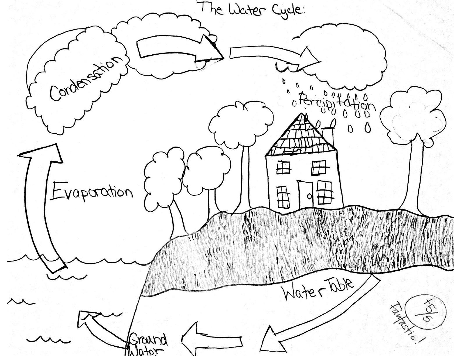 10 Best Images Of Water Cycle Worksheet 5th Grade