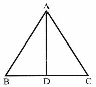CBSE Class 6 Maths Basic Geometrical Ideas Worksheets 6