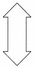 CBSE Class 6 Maths Symmetry Worksheets 2