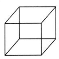 CBSE Class 7 Maths Visualising Solid Shapes Worksheets 1