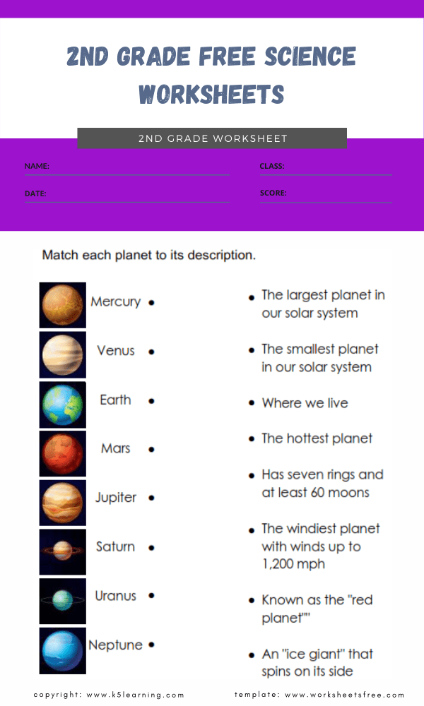 2nd grade free science worksheets 4