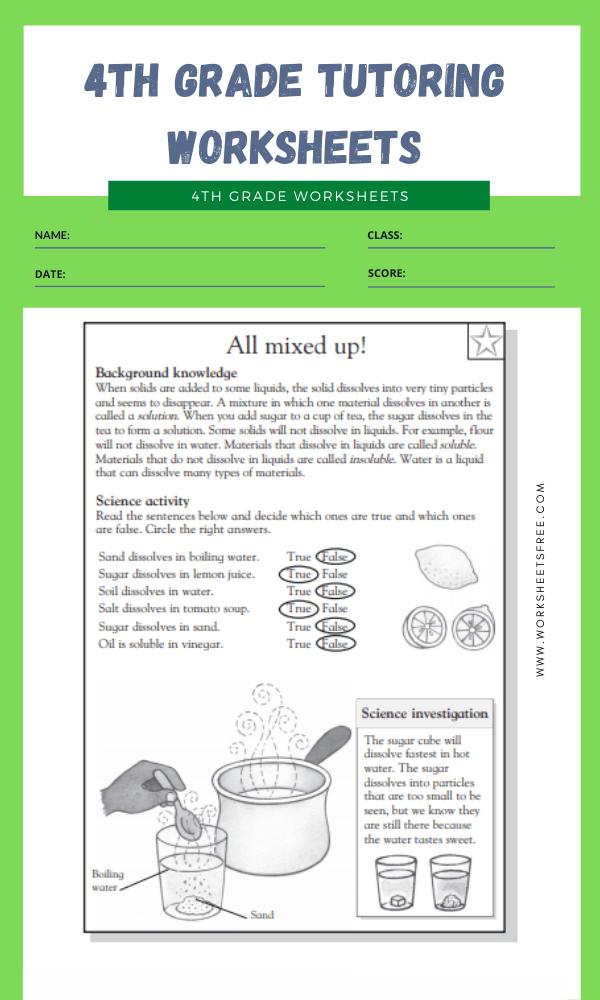 4th Grade Tutoring Worksheets 8