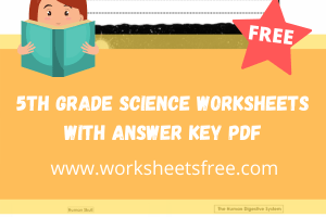 5th grade science worksheets with answer key pdf