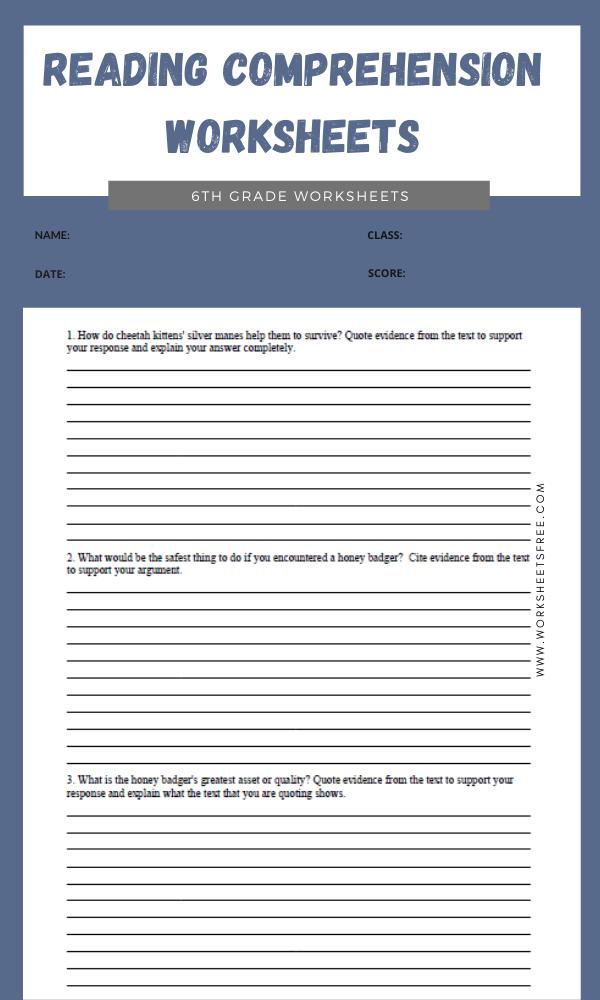 6th Grade Reading Comprehension Worksheets 3