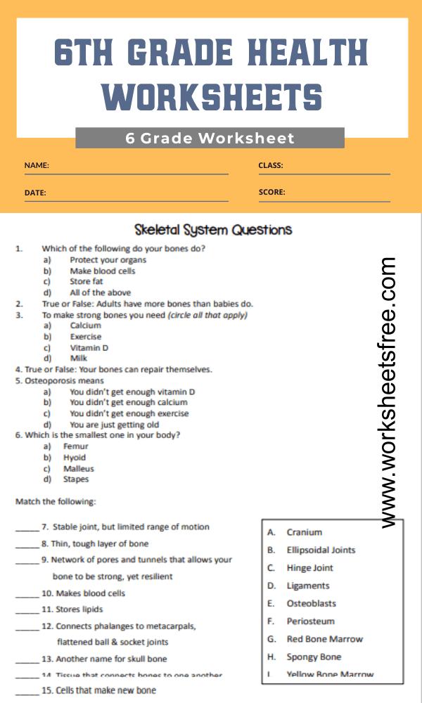 6th grade health worksheets 3