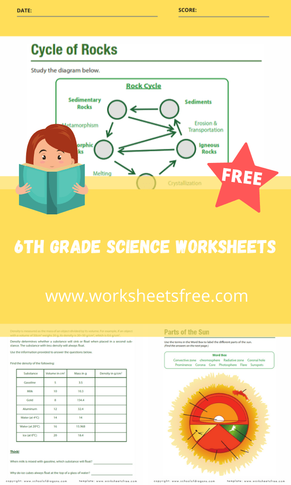 6th grade science worksheets