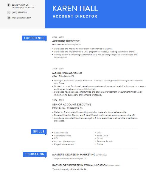 Account Director Resume Sample 2