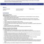 Account Director Resume Sample 4