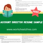 Account Director Resume Sample