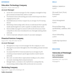 Account Manager Resume Sample 2