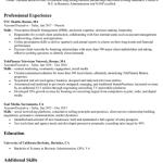 Accounts Executive Resume Example 2