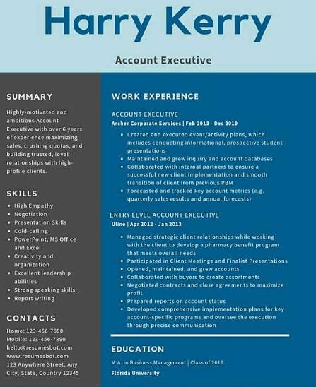 Accounts Executive Resume Sample 4