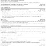 Associate Operations Analyst Resume Sample 4