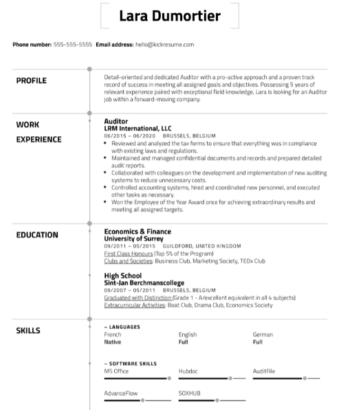 Auditor Resume Example 4