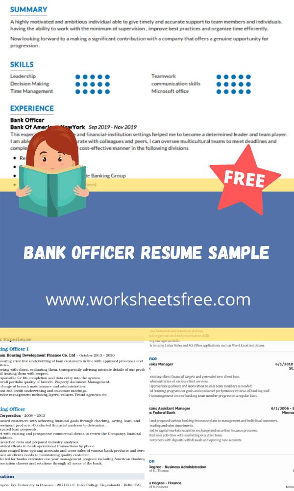 Bank Officer Resume Sample