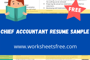 Chief Accountant Resume Sample