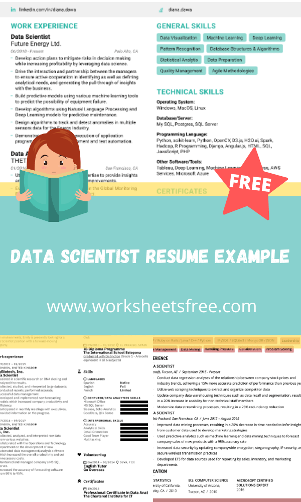 Data Scientist Resume Example