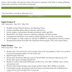 Digital Designer Resume Sample 2