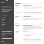 Digital-Marketer-Resume-Sample-3