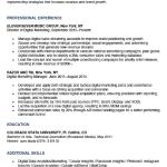 Digital Marketer Resume Sample 5