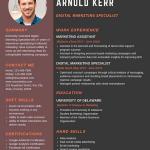 Digital Marketing Expert Resume Sample 3