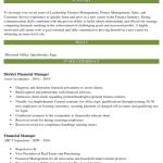 Finance Director Resume Sample 3