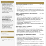 Finance Director Resume Sample 4