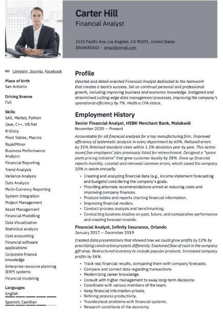 Financial Analyst Resume Sample 5