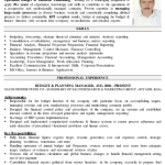 Financial Controller Resume Sample 5