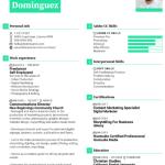Graphic Designer Resume Sample 1