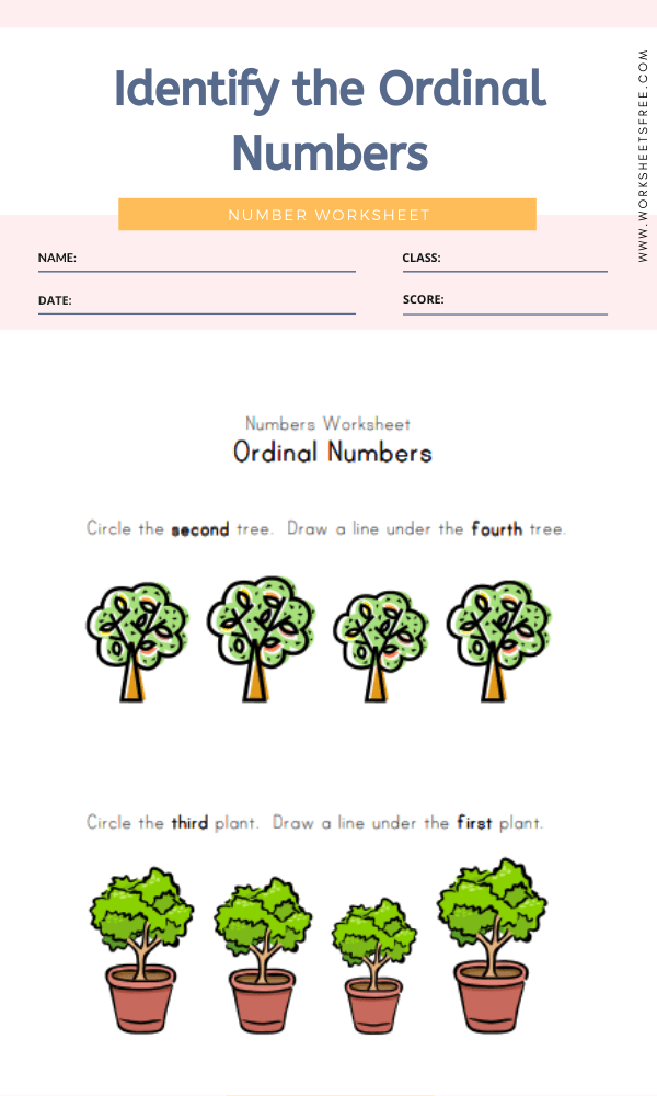 Identify the Ordinal Numbers 2