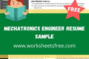 Mechatronics Engineer Resume Sample