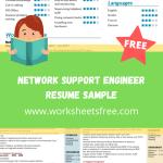 Network Support Engineer Resume Sample