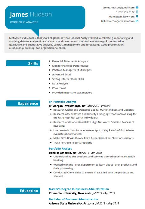 Portfolio Analyst Resume Example 3