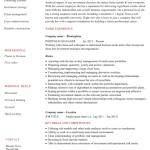 Portfolio Analyst Resume Example 4
