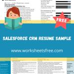 Salesforce CRM Resume Sample