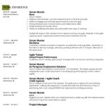 Scrum Master Resume Example 3