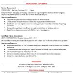 Senior Accountant Resume Example 3