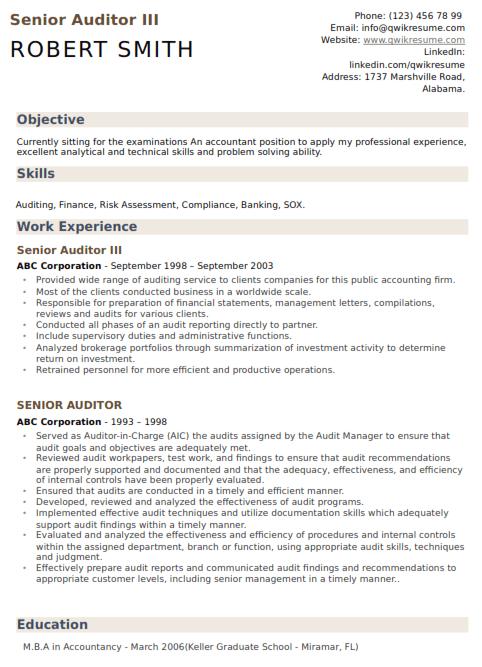 Senior Auditor Resume Sample 3